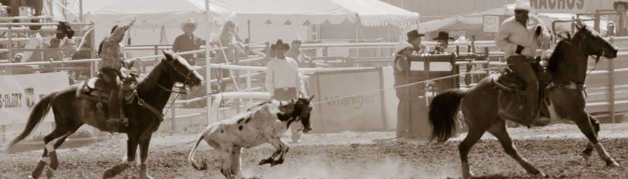 Tucson Rodeo 18 Feb 2012 - 8