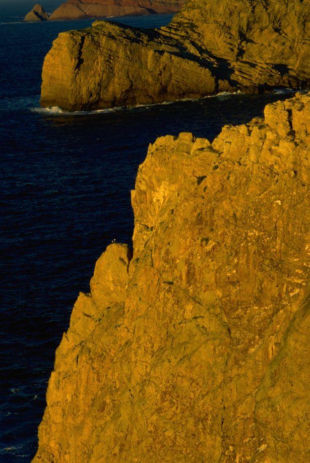 Sagres' Cliffs