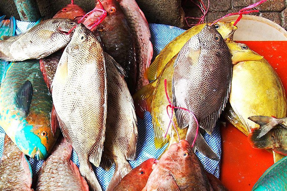 Fish at the market 918x609