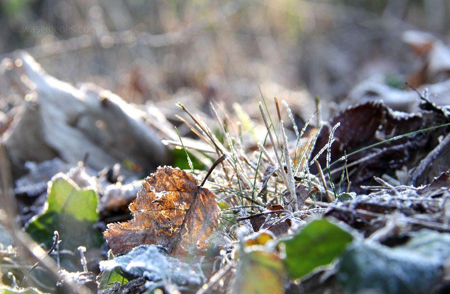 manfrotto winter was eigenes 1
