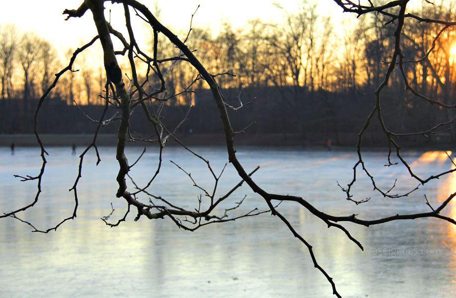 manfrotto winter was eigenes 7