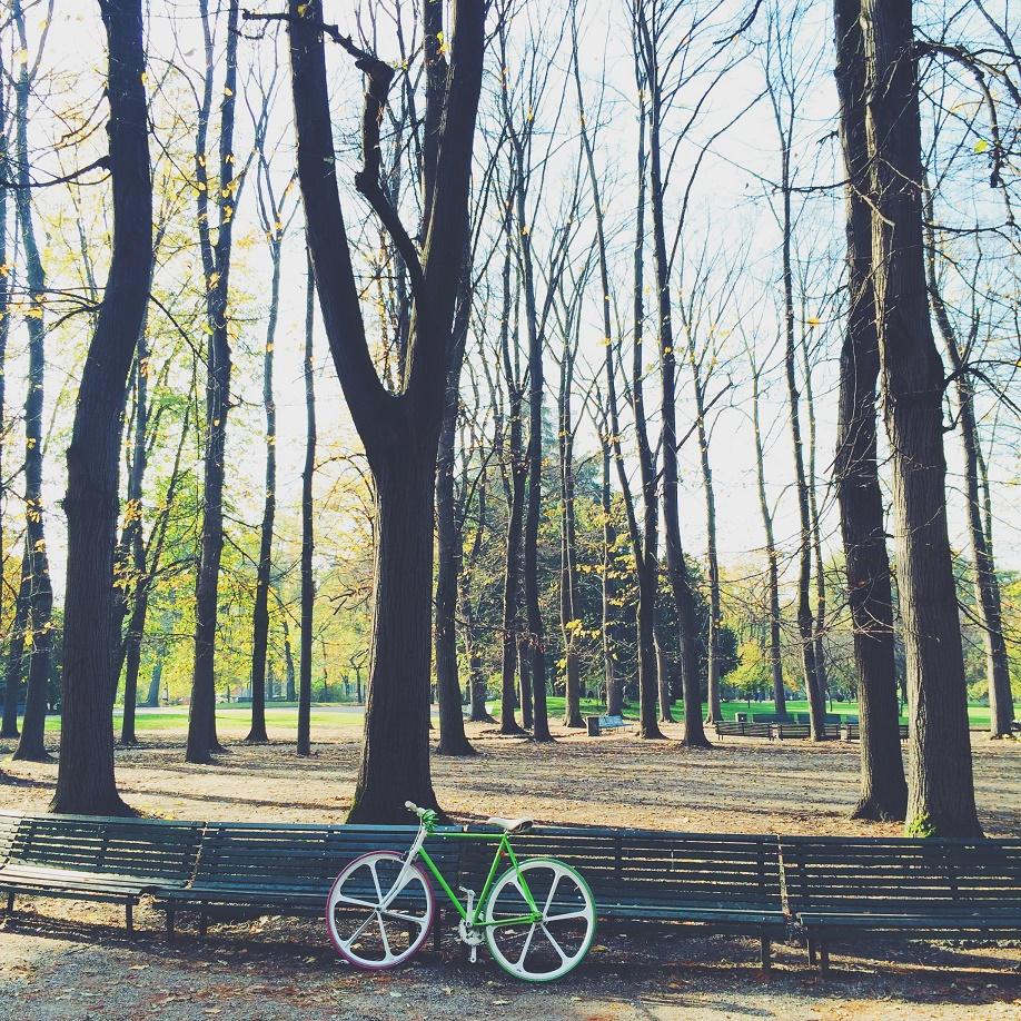 Photo 6 - Bike solo