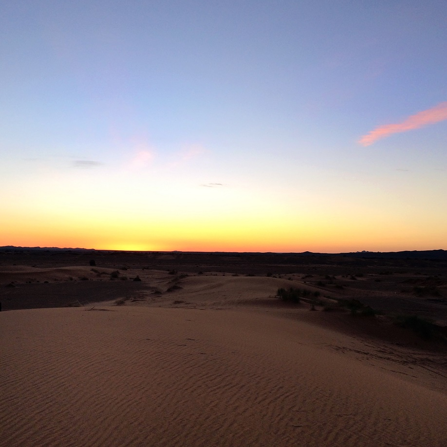 photo 3 - dawn in the desert