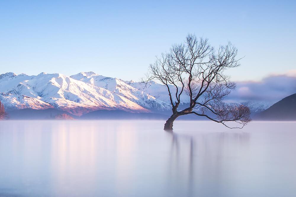 Top 10 Instagram Spots In New Zealand Manfrotto Imagine More