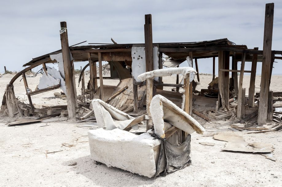 Salton Sea: The Dead Zone