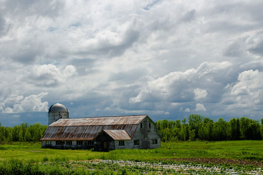 Farm_Vermont_Blotto_6534