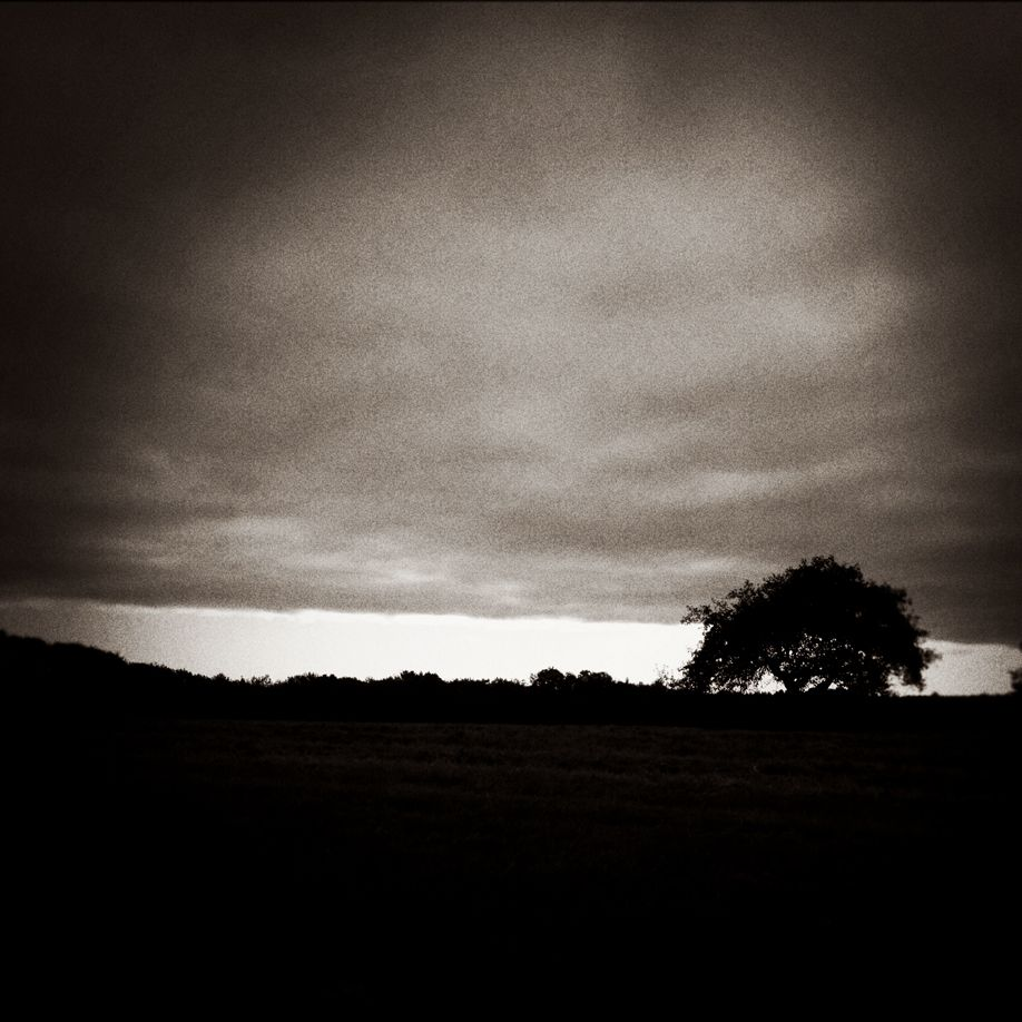 Tuttle_3_Silhouette
