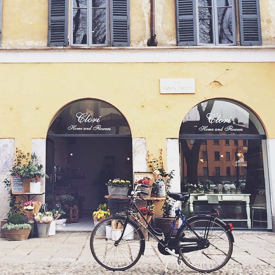 photo 5 - bicycle and flower shop