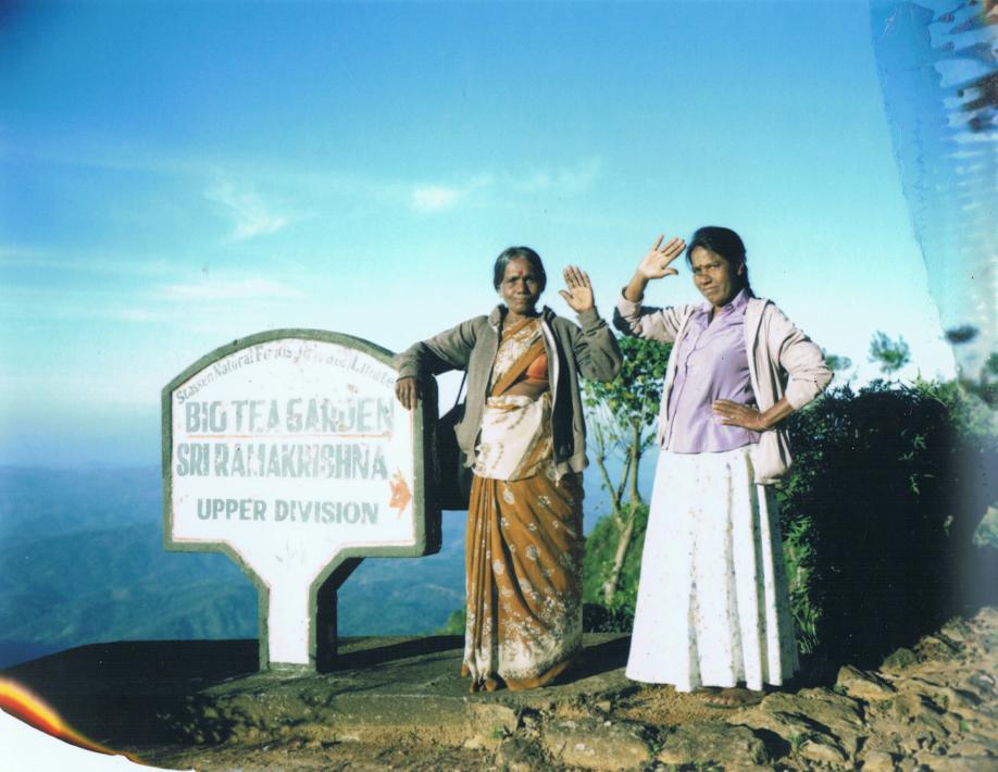 Tea gatherers in Haputale - Sri Lanka - Mamiya Universal & Polaroid black - Film Fuji FP100C - ©jaimelemonde.fr