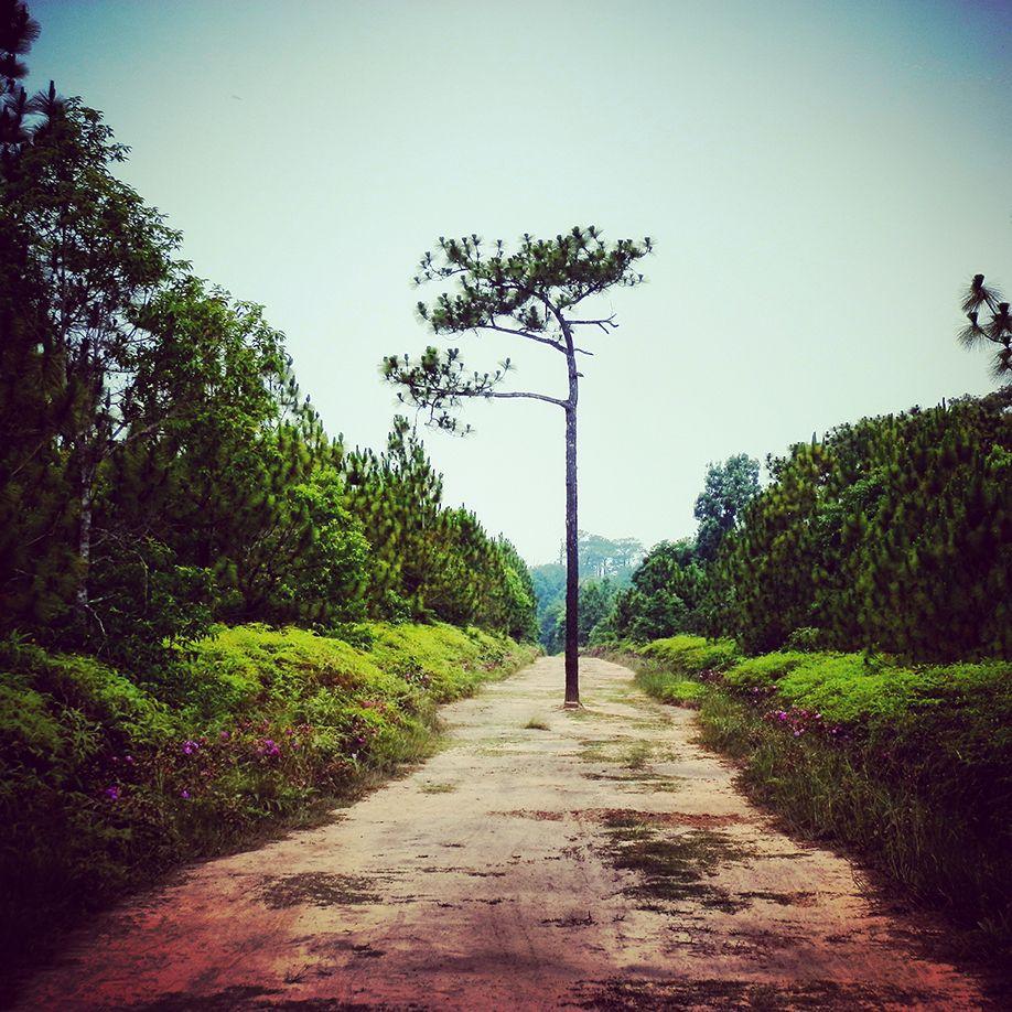 phu-kradeng-thailand